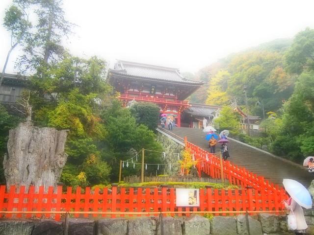 鎌倉の旅 <鶴岡八幡宮Ⅲ>_d0295818_2232331.jpg