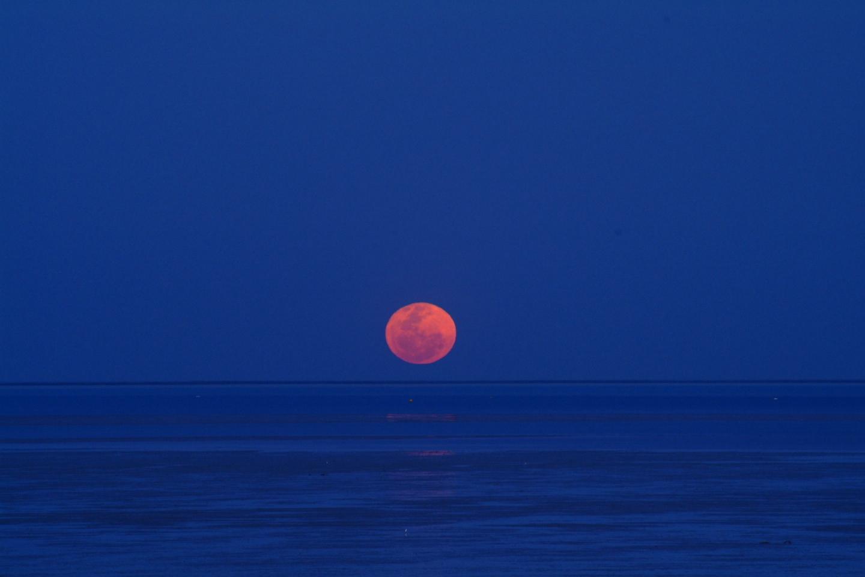 月への階段 西オーストラリア_f0050534_08594794.jpg