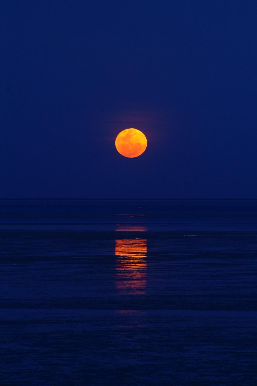 月への階段 西オーストラリア_f0050534_09012164.jpg