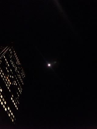 blog;浜松町の月_a0103940_03025159.jpg