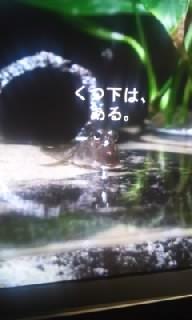 f0200871_012556.jpg