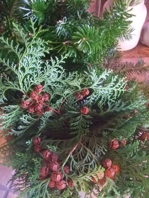 オークリーフ(クリスマス一色)_f0049672_18352068.jpg
