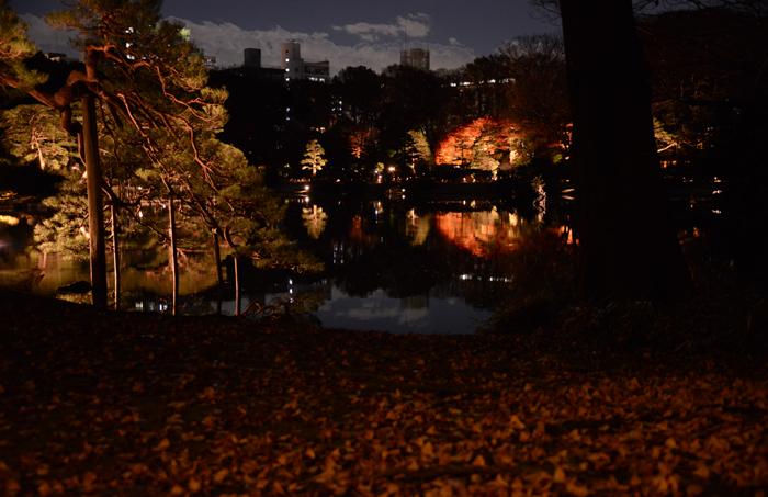 六義園ライトアップ紅葉写真アップ!_e0171573_23294515.jpg