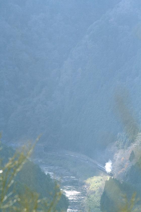 久慈川に沿って走るC61 - 2014年初冬・水郡線 - _b0190710_2141743.jpg