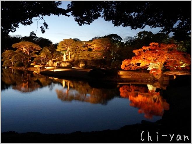 六義園 「紅葉と大名庭園のライトアップ」_e0219011_13473931.jpg