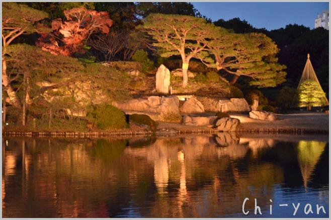 六義園 「紅葉と大名庭園のライトアップ」_e0219011_13481863.jpg