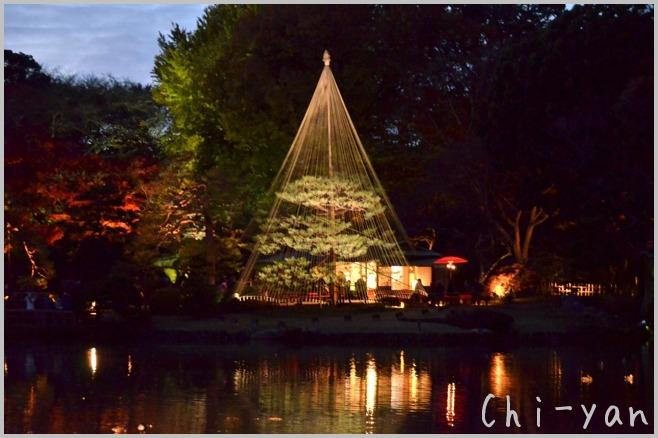 六義園 「紅葉と大名庭園のライトアップ」_e0219011_13482773.jpg