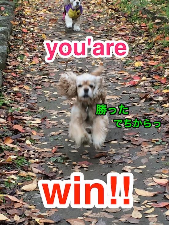b0067012_1293386.jpg