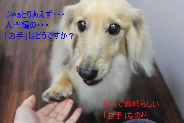b0130018_100023.jpg