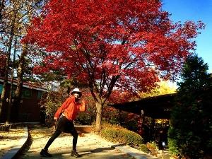 ソウルの秋から冬♪_c0139321_17381750.jpg