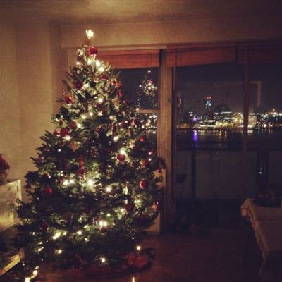 クリスマスツリーの飾り付けと蔵出し手前味噌の準備♪_f0095325_23314647.jpg