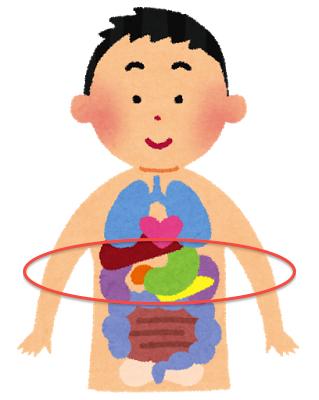肝臓疲労による肘の痛み〜ある日の施術より〜_e0073240_7225465.jpg