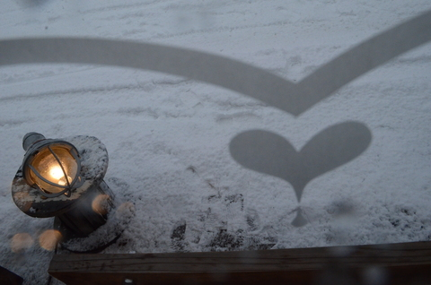 雪だね~♪_b0207642_17282021.jpg