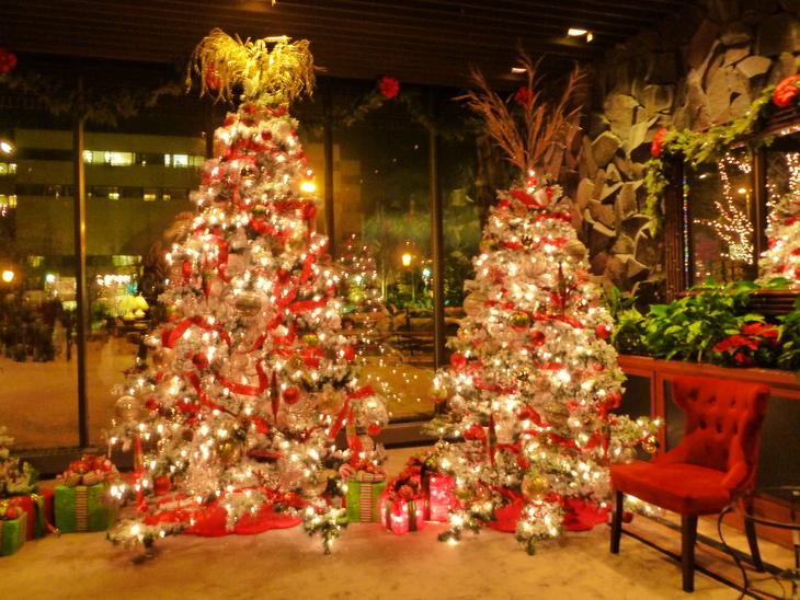 クリスマスビレッジ_b0135948_1055930.jpg