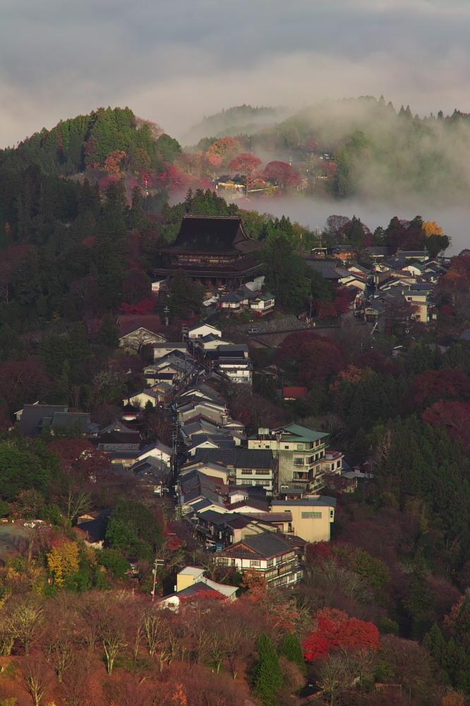 紅葉  2014    <吉野山>                          _f0021869_2364945.jpg