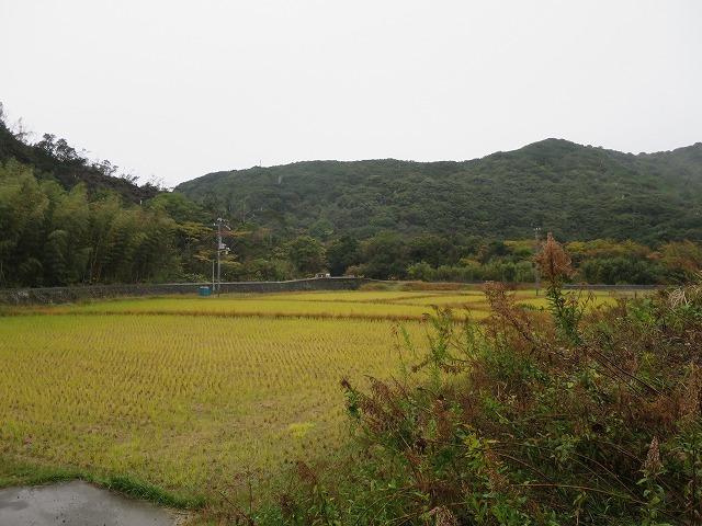熊野古道大辺路・串本から古座川へー6_b0326483_23034675.jpg