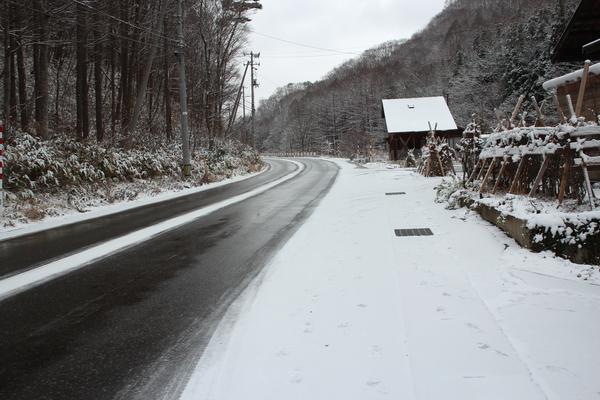 現在の雪の状況_f0227395_1024878.jpg