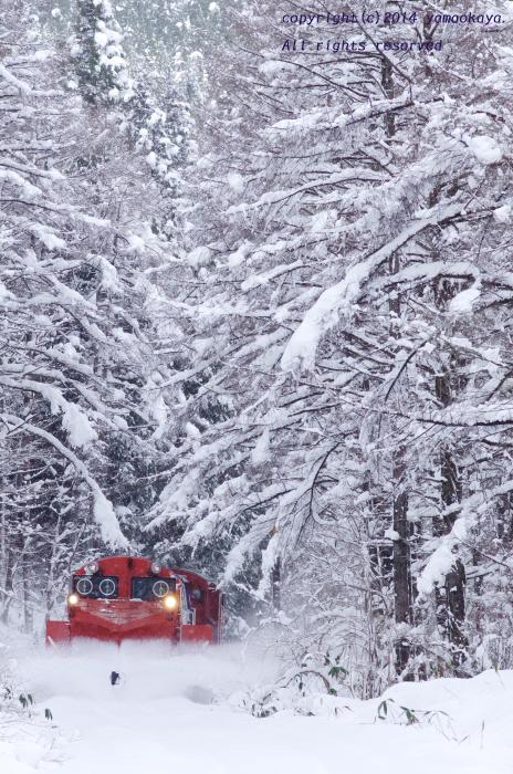 日中のラッセル ~冬神おろち・木次線ラッセル列車_d0309612_2122229.jpg