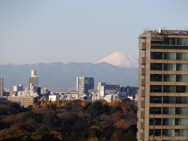 朝の富士山は吉だったのか凶だったのか_c0025115_21374653.jpg