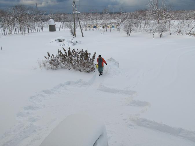 今季一番の積雪!_d0072917_13435943.png