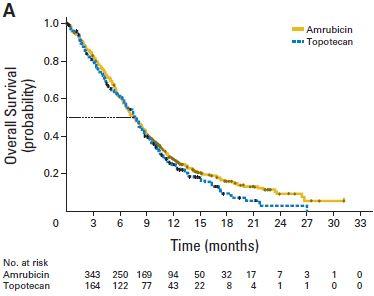 ACT-1試験:小細胞肺癌のセカンドラインにおけるアムルビシンとトポテカンの比較_e0156318_17491538.jpg