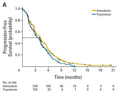 ACT-1試験:小細胞肺癌のセカンドラインにおけるアムルビシンとトポテカンの比較_e0156318_17545072.jpg