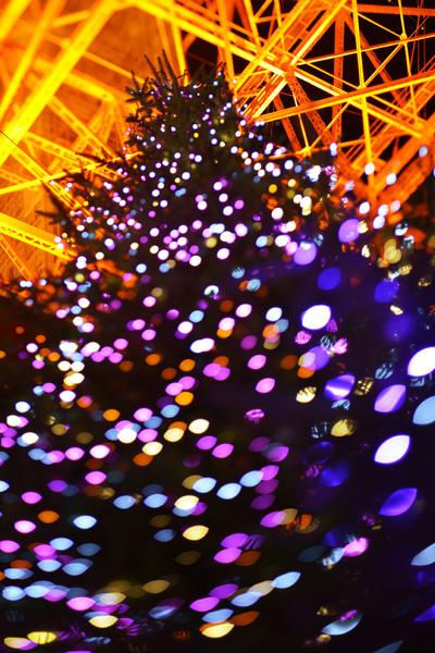 東京タワー_b0175635_15455978.jpg
