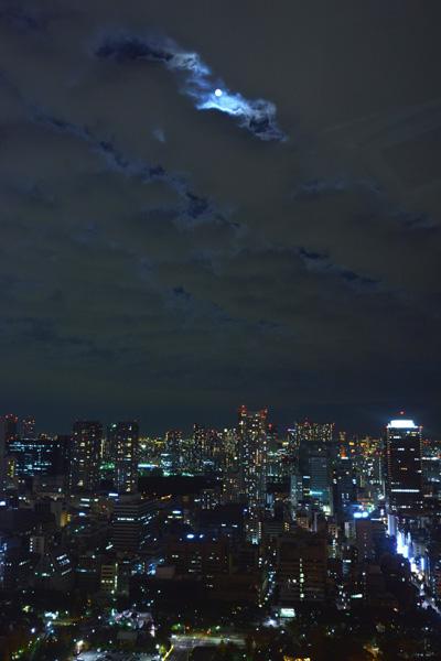 東京タワー_b0175635_1546283.jpg