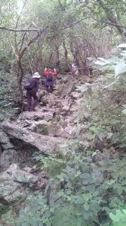 嘉津宇岳から古巣岳へ。_b0124144_1725223.jpg