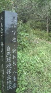 嘉津宇岳から古巣岳へ。_b0124144_17252264.jpg