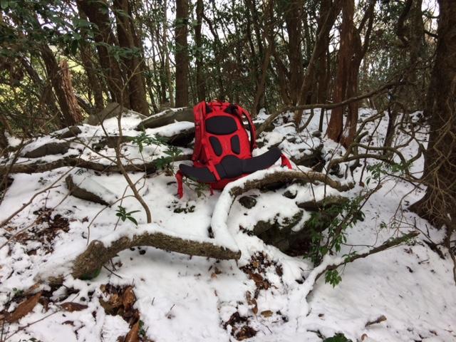 初雪の山_b0161750_2115875.jpg