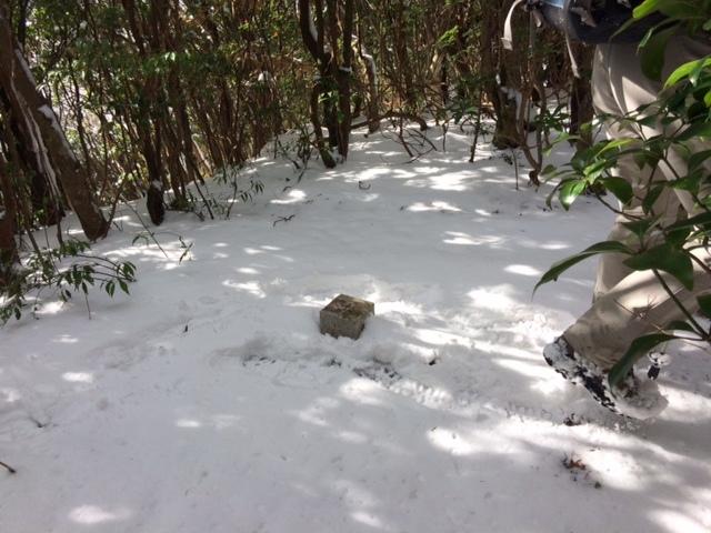 初雪の山_b0161750_2119180.jpg