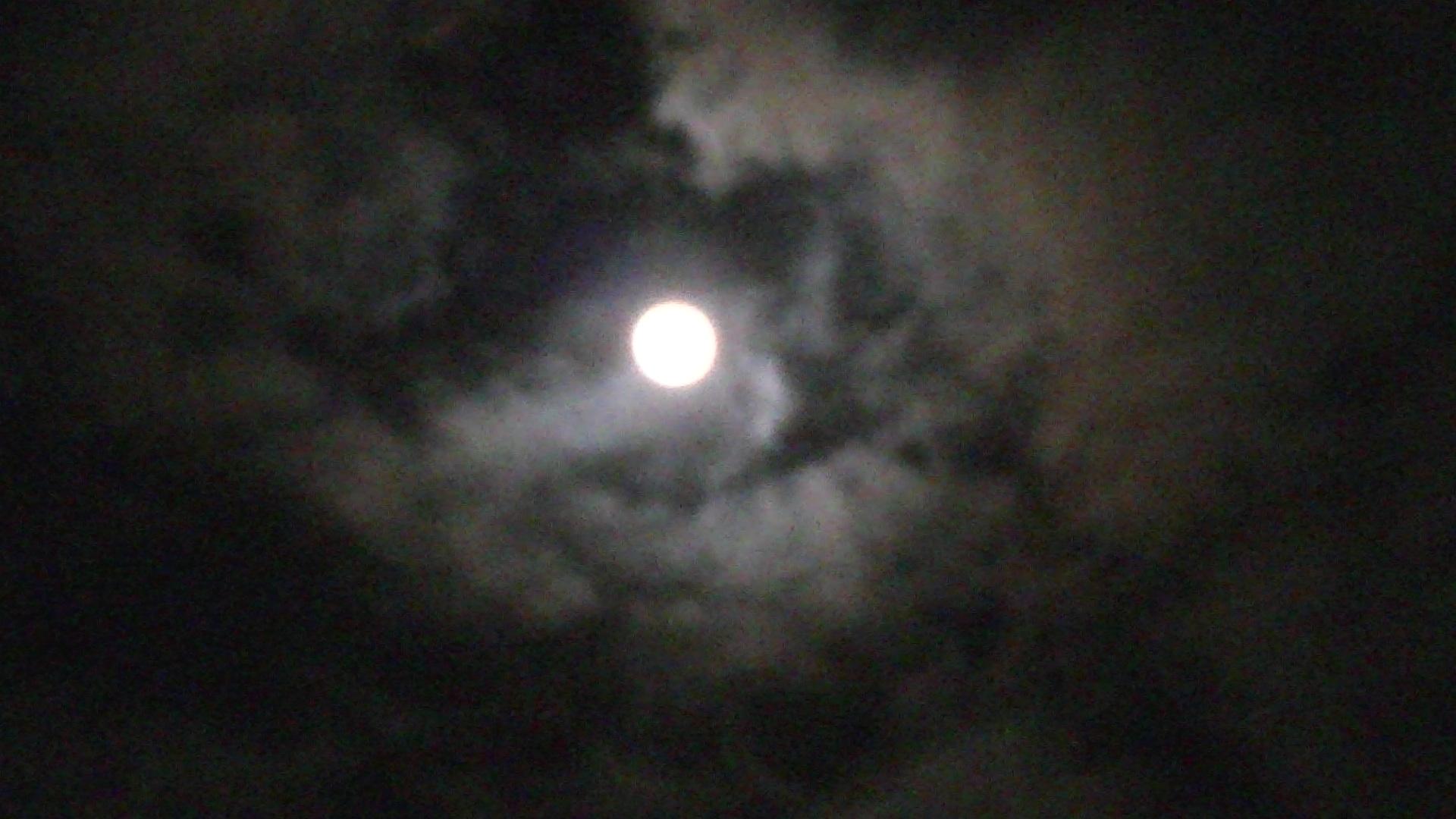 満月♪_e0075673_02534.jpg