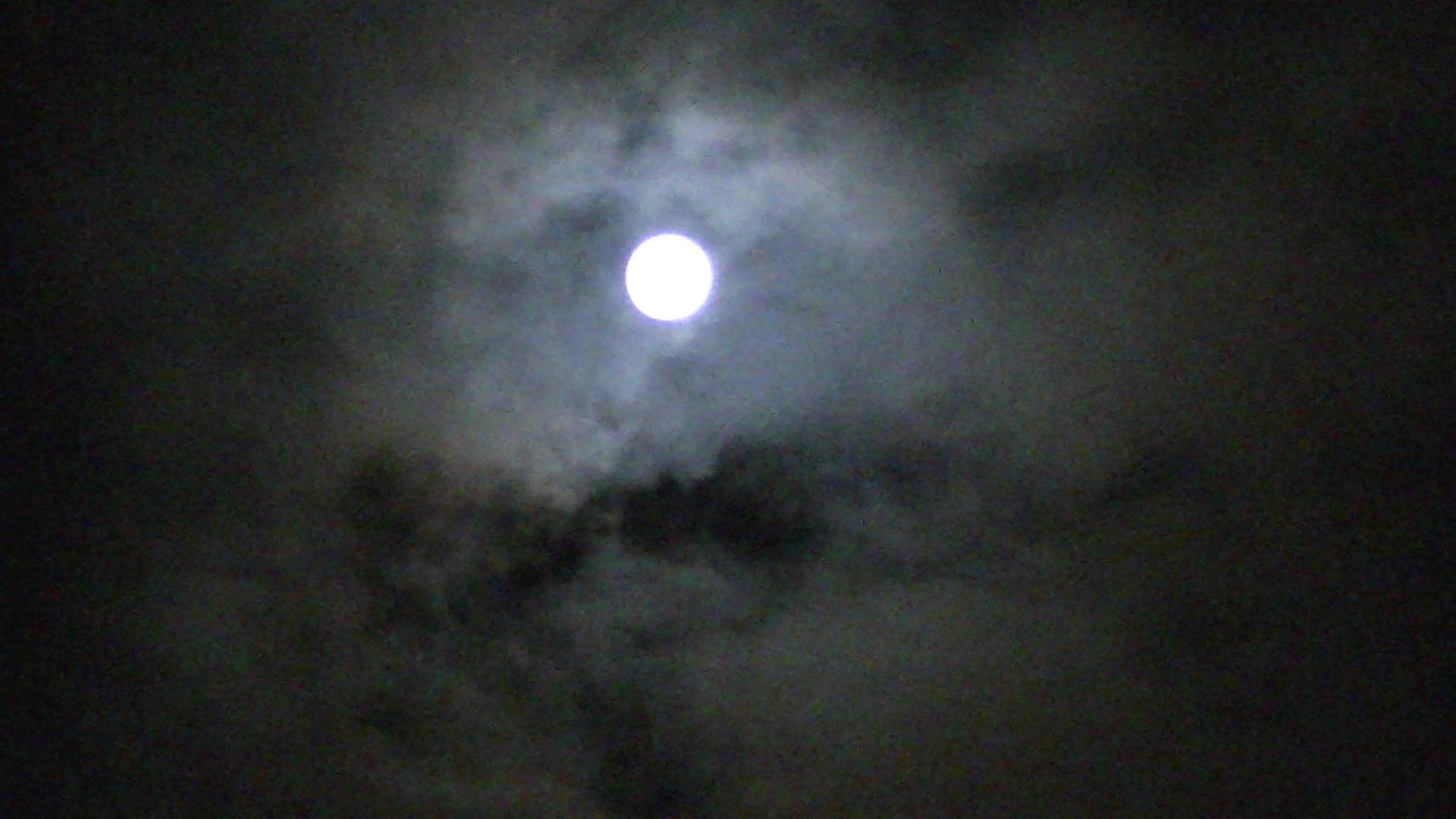 満月♪_e0075673_026638.jpg