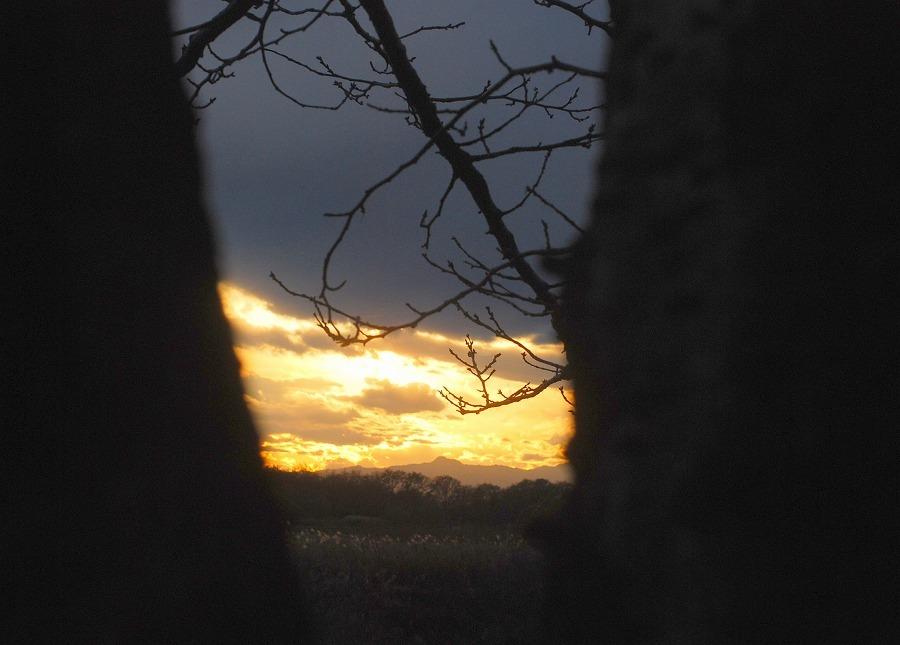 冬の落陽_c0187781_00254108.jpg