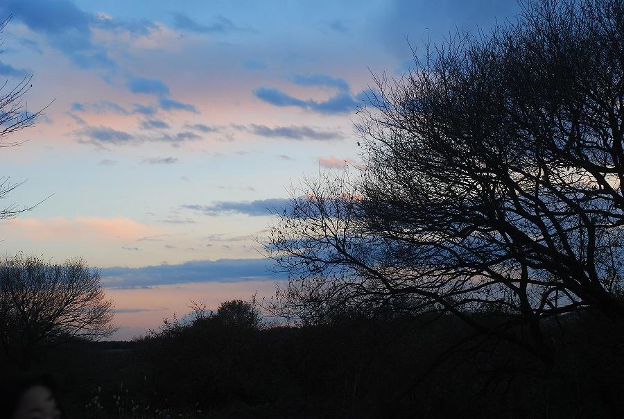 冬の落陽_c0187781_00373676.jpg