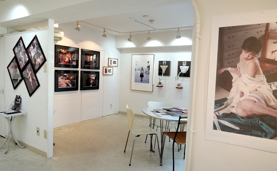 ギャラリー的ロマンポルノ展 →11/24〜12/1_f0138928_09381212.jpg