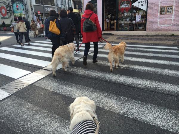 街中散歩!_c0110361_14064534.jpg