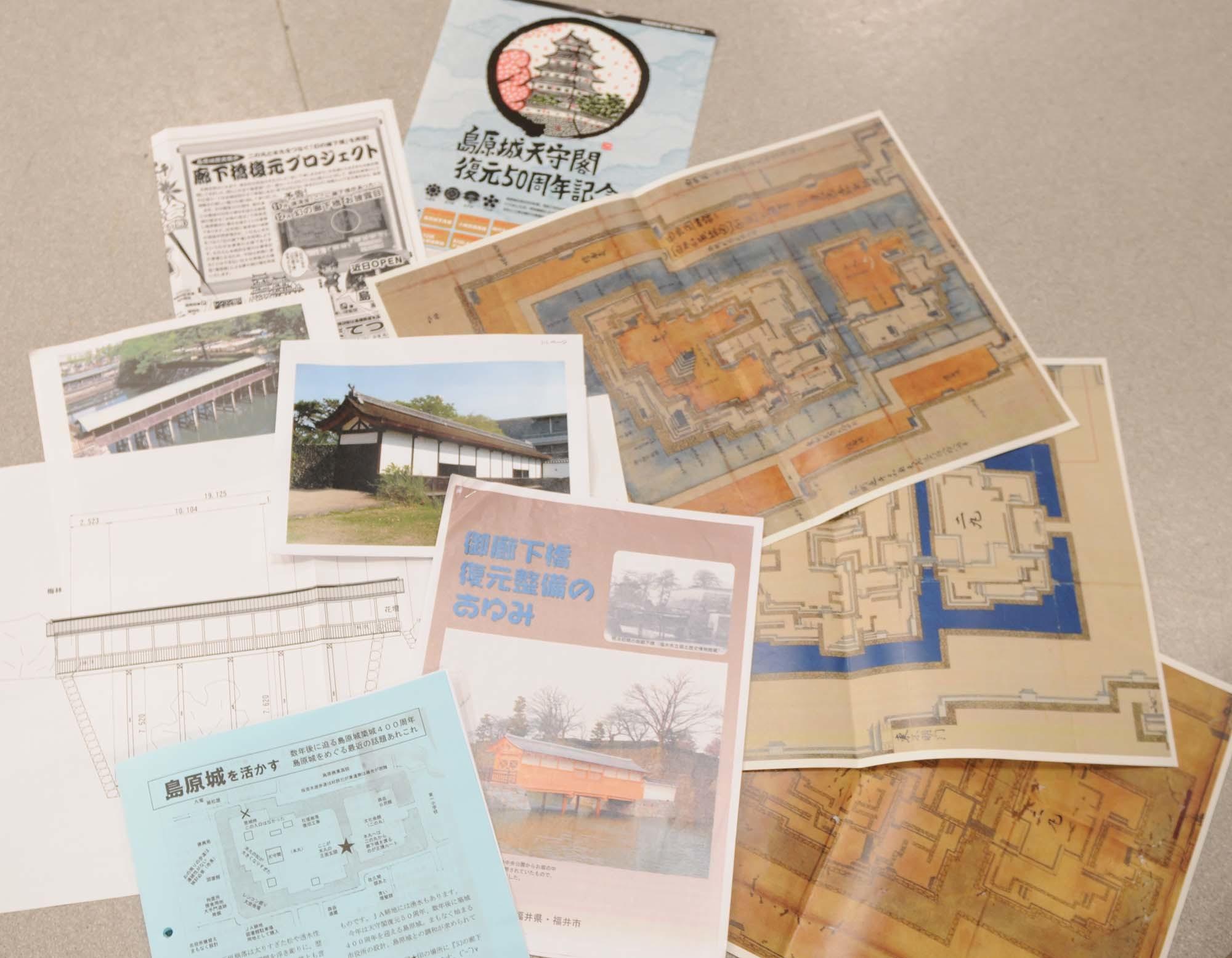 議会でも廊下橋プロジェクト_c0052876_22472381.jpg