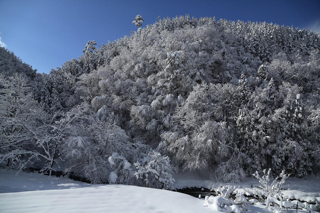 山に暮らせば_e0091879_03814100.jpg