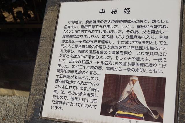 晩秋奈良の旅、奈良當麻寺の秋お寺と紅葉、日本一の紅葉を求めて藤田八束、當麻寺西南院の庭園の紅葉_d0181492_2119387.jpg