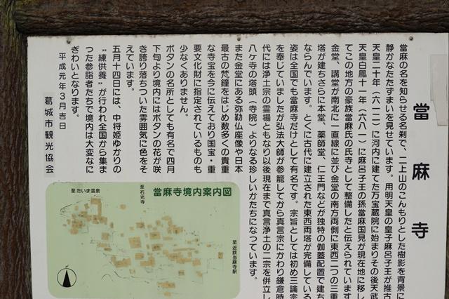 晩秋奈良の旅、奈良當麻寺の秋お寺と紅葉、日本一の紅葉を求めて藤田八束、當麻寺西南院の庭園の紅葉_d0181492_21195630.jpg