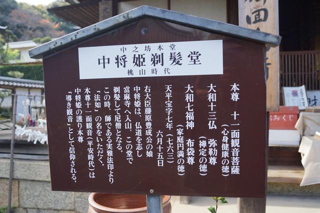 奈良件葛西市當麻寺中之坊を訪問 奈良文化に触れる_d0181492_2152659.jpg