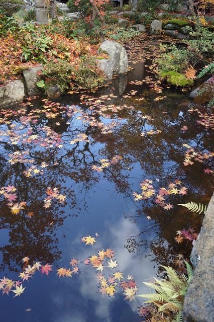 奈良件葛西市當麻寺中之坊を訪問 奈良文化に触れる_d0181492_21542946.jpg
