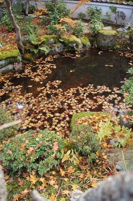 奈良件葛西市當麻寺中之坊を訪問 奈良文化に触れる_d0181492_2154453.jpg