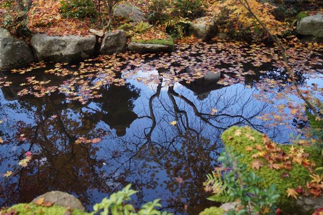 奈良件葛西市當麻寺中之坊を訪問 奈良文化に触れる_d0181492_21545016.jpg