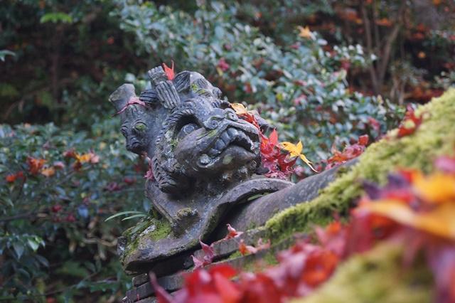 奈良件葛西市當麻寺中之坊を訪問 奈良文化に触れる_d0181492_21551570.jpg