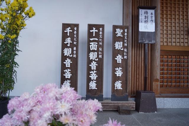 驚愕!!當麻寺西南院の素晴らしい紅葉と庭園、奈良の秋素晴らしい美しさに逢う旅_d0181492_21593517.jpg