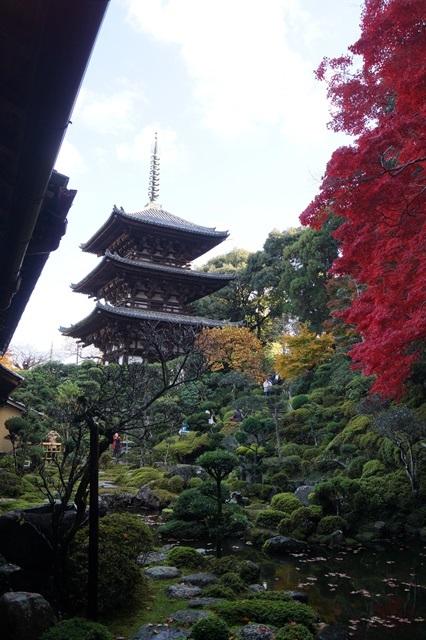 驚愕!!當麻寺西南院の素晴らしい紅葉と庭園、奈良の秋素晴らしい美しさに逢う旅_d0181492_2201776.jpg