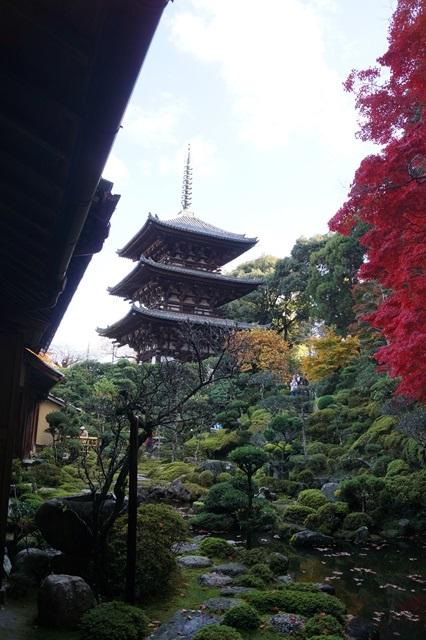 驚愕!!當麻寺西南院の素晴らしい紅葉と庭園、奈良の秋素晴らしい美しさに逢う旅_d0181492_2203032.jpg